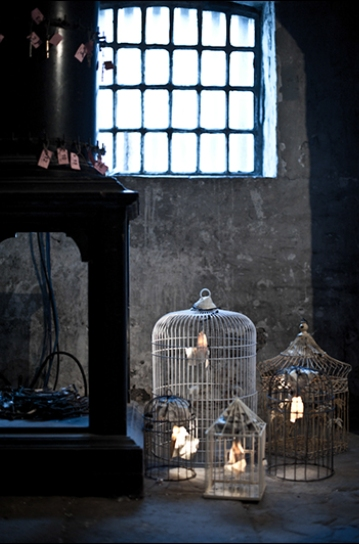 bird with boy - luca photos[1]-24